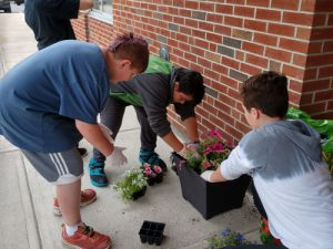 three boys planting flowers in a plastic pot outdoors