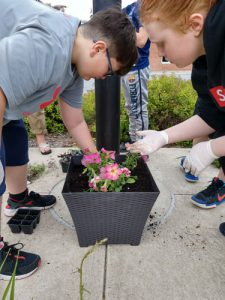 two boys plant flowers in plastic pot outdoors